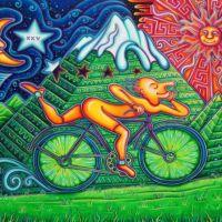 Bugün Dünya LSD, Bisiklet Ve Samet Günü